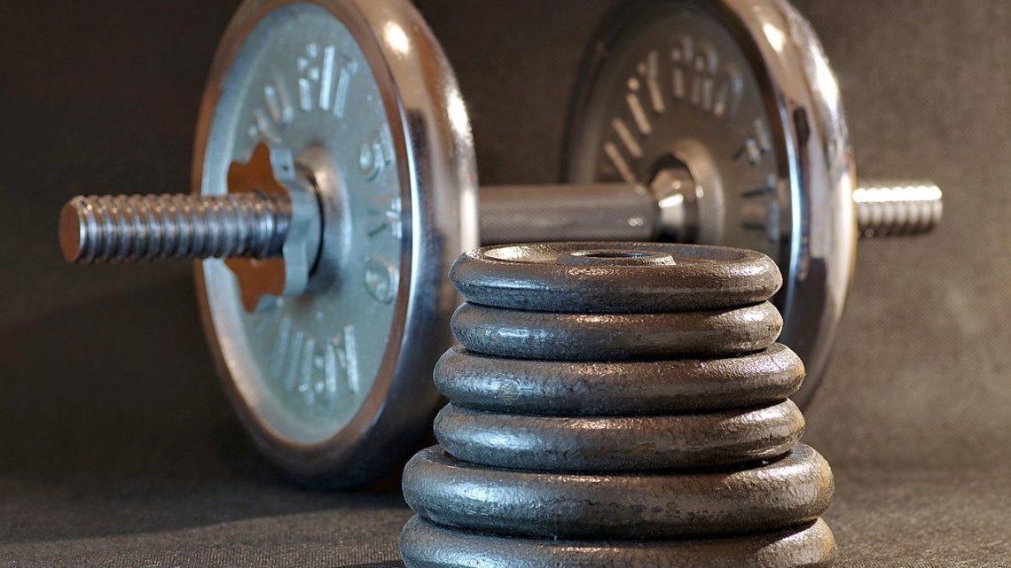 sport, gym, fitness